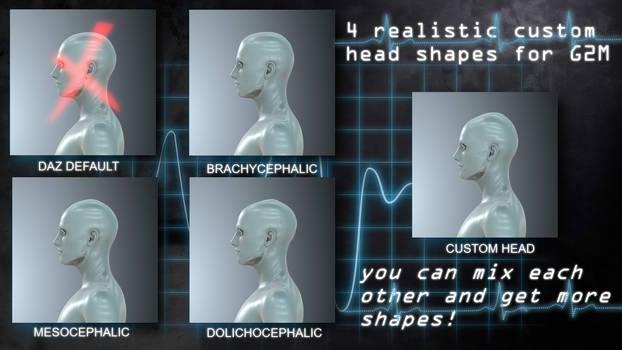 HS Cranium/Head Shapes For G2M -FREEBIE