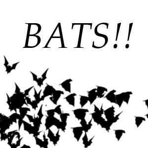 Bats brushes by Kencho