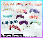 Flower Crowns PNG'S