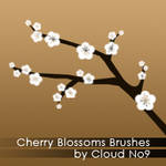 Cherry Blossoms Brushes