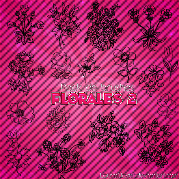 FLorales Sketches Brushes