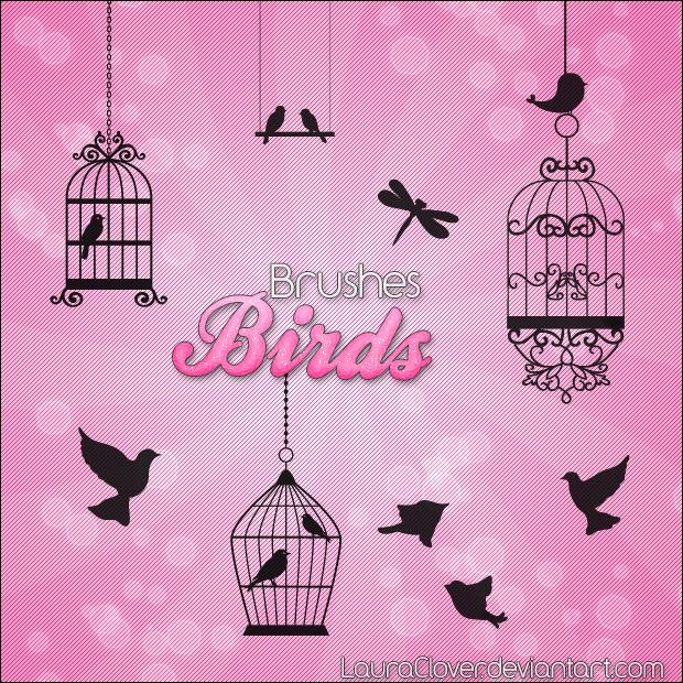 Pack de brushes Birds