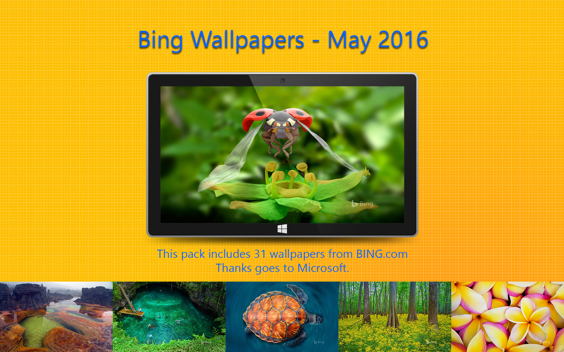 Bing Wallpapers - May 2016 by Misaki2009