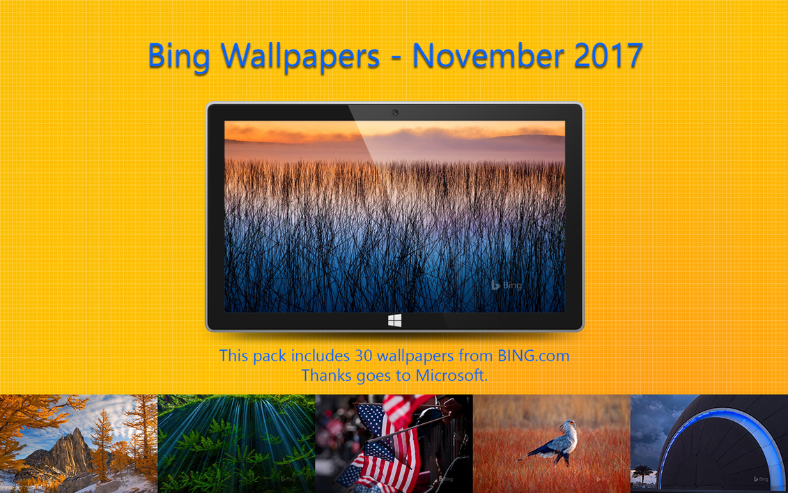 Bing Wallpapers - November 2017 by Misaki2009