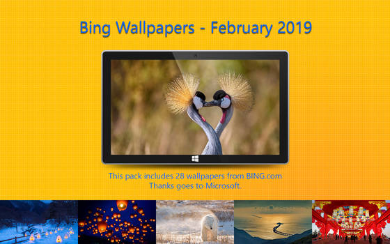 Bing Wallpapers - February 2019