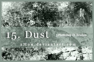 15. Dust by xMo0