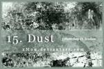 15. Dust