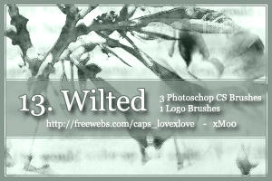 13. Wilted by xMo0