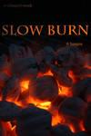 Slow Burn Pack by wyldangel-stock