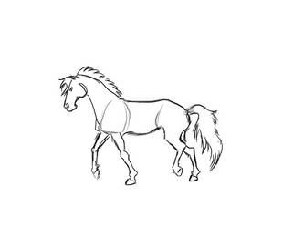 Animation Test (horse) by ByChamallow