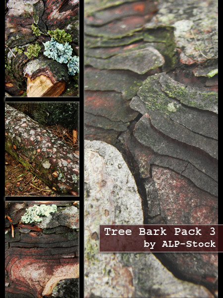 Tree Bark Pack 3