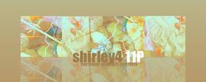icon-shirley-4