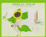 Shirley-png6p