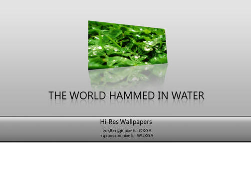 The world hemmed in water