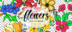 png pack #1 - flowers