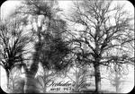 Orchidee's Trees set 02