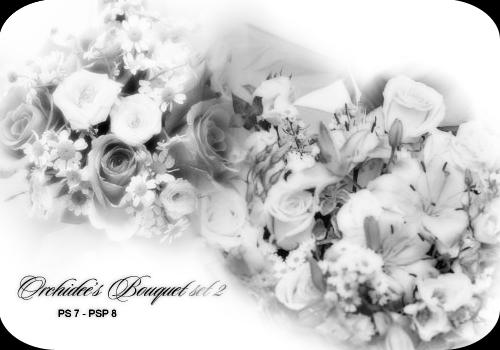 Orchidee's bouquet set 02 by orchidee
