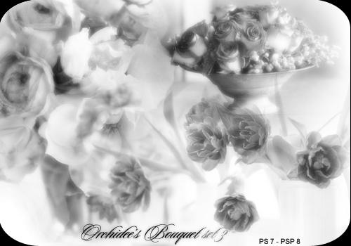 Orchidee's bouquet set 03 by orchidee