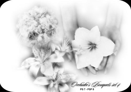 Orchidee's bouquet set 04