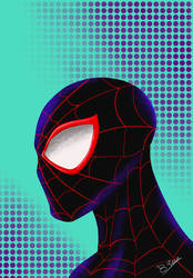 Step Into The SpiderVerse