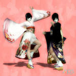 DOA5 Kokoro (Geisha Concept)