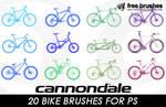 Bike Brushes