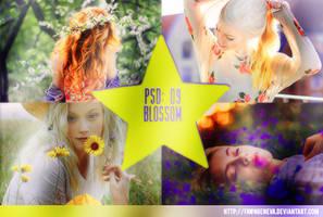 PSD 09: Blossom by fawngeneva