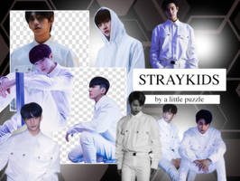 STRAY KIDS 01 (PNG'S) by ALITTLEPUZZLE