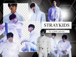 STRAY KIDS 01 (PNG'S)