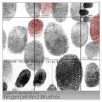 Fingerprinted Brushes