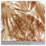 Exploding Flower brushes
