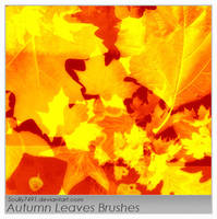 Autumn Leaves by Scully7491