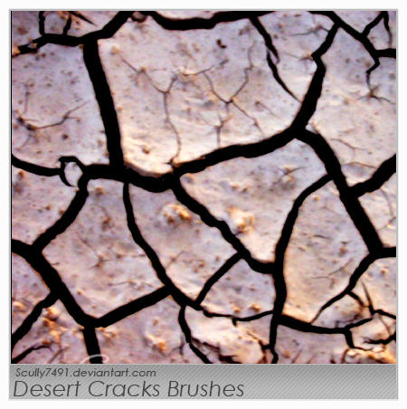 Desert Cracks Brushes by Scully7491