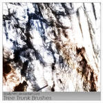 Tree Trunk Brushes