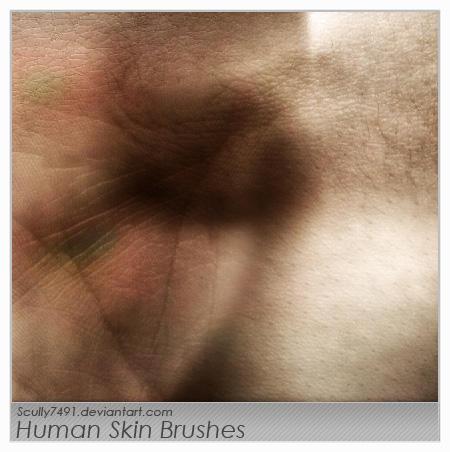 Human Skin Brushes