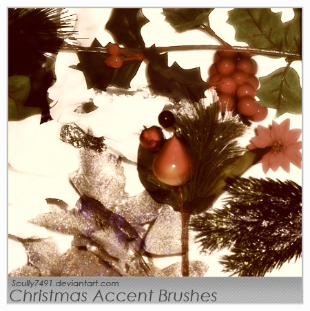 Christmas Accent Brushes