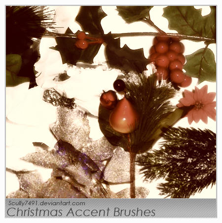 Christmas Accent Brushes by Scully7491