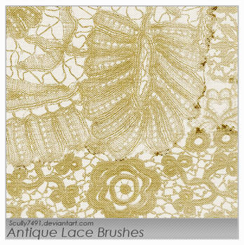Antique Lace Brushes