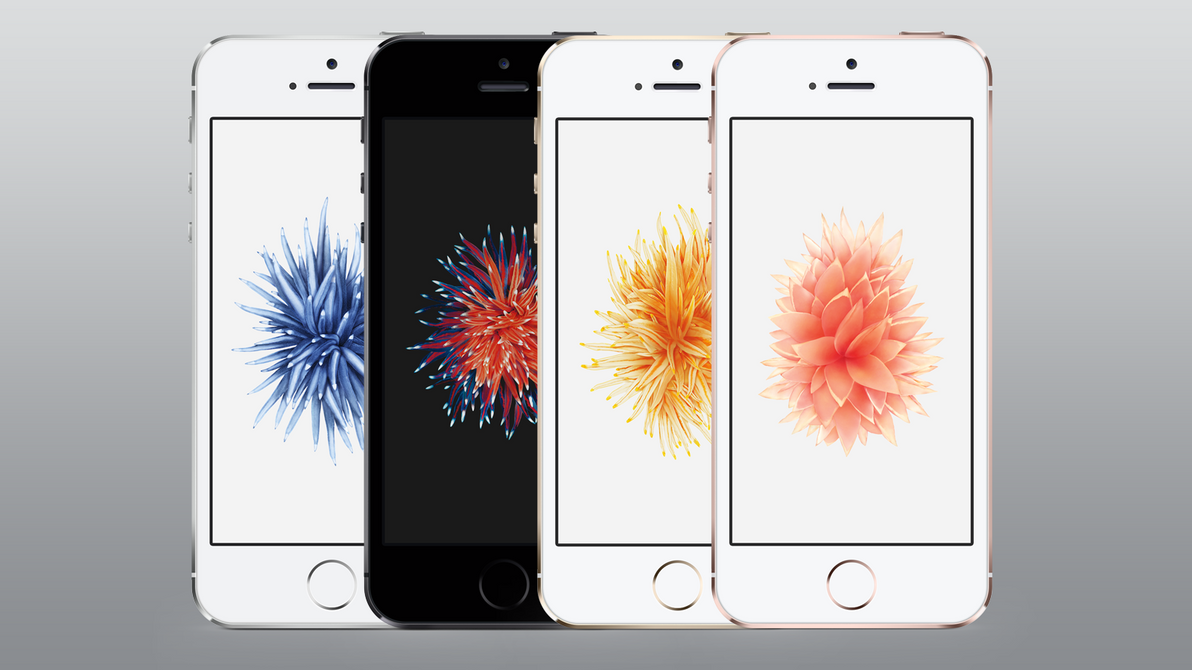 iphone se flower wallpaper by zachlucier on deviantart