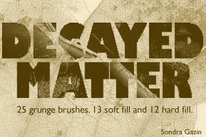 Decayed Matter by slgazin