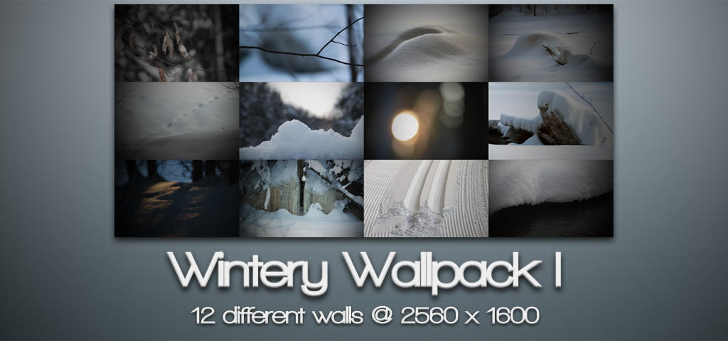 Wintery wallpack I by Vipee