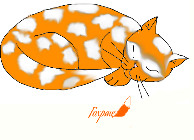Sleeping foxpaw by FireDaisy365