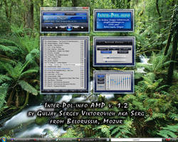 Inter-Pol.info AMP v. 1.2 by SergeyGuljay