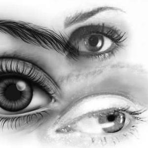 Brush Set: Eyes by miaka-stock