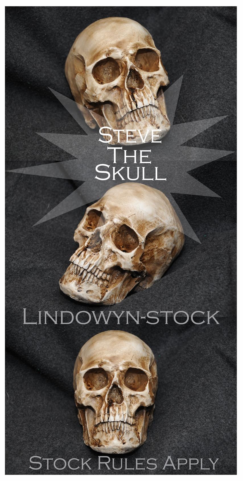 Steve the Skull Pack