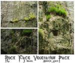 Rock Face Vegetation by lindowyn-stock