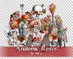 Anatomic Roses PNGs