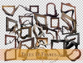 Trees In Frames PNGs