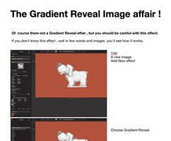 The Gradient Reveal affair
