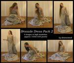 Brocade Dress Pack 2